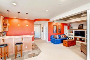 16421 Stonefeld Place Parker-large-021-15-Lower Level Family Room-1499x1000-72dpi