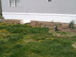 Landscaping Needing Help